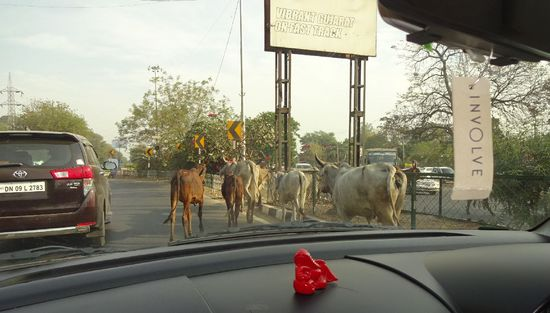 India2-2018PlastIndia2018road.jpg