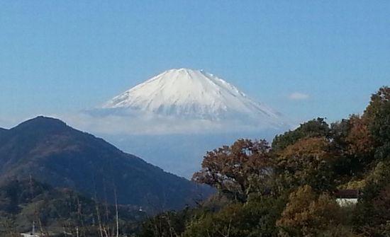 Meijirubber20131130_2.jpg