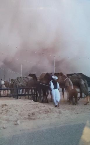 Sandstorm1.png